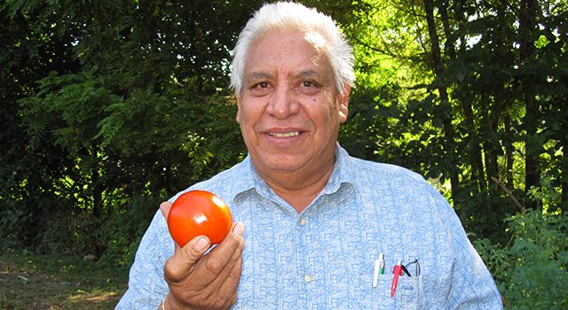 Image of man holding a tomato.
