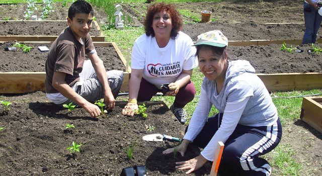 Image of people planting a community garden.